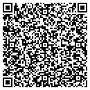 QR code with Professional Travel Service contacts