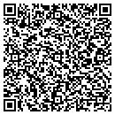 QR code with Chignik Environmental contacts
