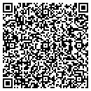 QR code with Blue Dolphin contacts