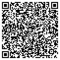 QR code with New Life Tile contacts