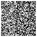 QR code with Clean Earth Systems contacts