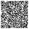 QR code with International Wood Industries contacts