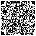 QR code with International Tours contacts