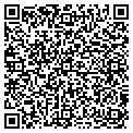QR code with New Image Painting Inc contacts