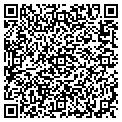 QR code with Dolphin Realty of Pine Island contacts