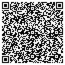 QR code with Professional Accounting Services contacts