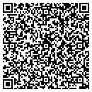QR code with Premier Dealer Service Inc contacts