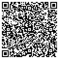 QR code with City Transmission & Auto Repr contacts