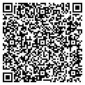 QR code with DWG Inc contacts