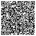 QR code with Motorsport Gallery Inc contacts