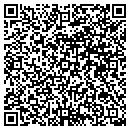 QR code with Professional Perfusion Assoc contacts