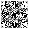 QR code with Rug Busters Inc contacts