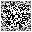 QR code with Professional Environmental Service contacts