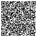 QR code with New Vision New Birth Mnstrs contacts