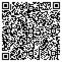 QR code with Auto Air & Elc of Lee Cnty contacts