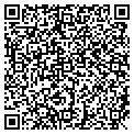 QR code with Delisle Drapery Service contacts