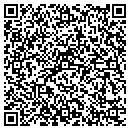 QR code with Blue Ribbon Industrial Components contacts