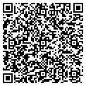 QR code with New Life Pools contacts