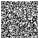 QR code with Professional Choice Mobile Service contacts