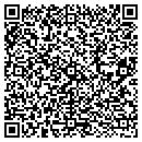 QR code with Professional Psychological Service contacts