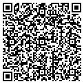 QR code with New Sign Co Inc contacts