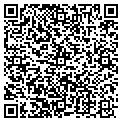 QR code with Aerial Ads Inc contacts