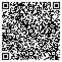 QR code with American Tint & Sunroof Inc contacts
