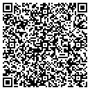 QR code with Borealis Brewery The contacts