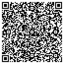 QR code with Professional Business Service Inc contacts