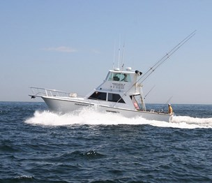 Persuader Sportfishing Charters